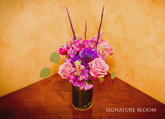 Los Gatos California Florist, Purple and Pink Arrangements (Signature Bloom) Tags: pictures flowers blue wedding decorations flower fall floral rose for design purple designer events stock feathers sanjose images reception anemone mauve designs florist vendor siliconvalley hydrangea weddings bridal decor peninsula southbay ideas arrangement weddingphotos arrangements sanjoseca losgatosca florists beautifulflowers specialevents centerpieces weddingideas bridalflowers losgatoscalifornia weddingdecorations floraldesigner flowerdesign 95121 95032 purplewedding weddingfloral weddingvendor flowersforwedding signaturebloom losgatosflowers wwwsignaturebloomcom losgatosweddingflorist bridalflorist losgatosflorist mauvewedding losgatoscaliforniaflorist