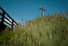 Looking Up (barkingduck99) Tags: longexposure bridge blue sky copyright abstract motion blur color green up grass lines clouds daylight newjersey weeds angle under may windy cables dreamy capemay tilt nd110 beachjuly2011wildwoodcape richardkownacki