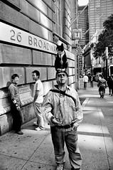 Cat as a Hat (B.G.S) Tags: new york nyc usa white man black guy nikon homeless nikkor manhatten 18200mm d90 vrii