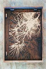 Green (jjldickinson) Tags: wood shadow pine print cherry carving card cedar printmaking needles olympusom1 sanpedro woodblock conifer deodarcedar fujicolorsuperiaxtra400 mokuhanga laserengraving cedrusdeodora haryndeleon lasercuttingshop promastermcautozoommacro2870mmf2842 promasterspectrum772mmuv roll318