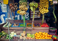 5 Kinds Of Bananas Of India (thedot_ru) Tags: travel red india green yellow shop geotagged store long canon20d small 2006 banana short assortment