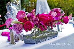 Floral Design San Jose, Head Table Centerpieces (Signature Bloom) Tags: pictures flowers wedding decorations orchid flower floral rose for design designer events sanjose images fremont reception designs florist vendor siliconvalley weddings bridal centerpiece decor callalily peninsula southbay ideas arrangement weddingflowers weddingphotos arrangements floraldesign sanjoseca florists specialevents centerpieces weddingideas headtable outdoorwedding bridalflowers summerwedding weddingdecorations floraldesigner flowerdesign 95123 95124 casualwedding 95136 receptionflowers 94555 95130 95121 95118 weddingflorist modernwedding decorationideas mokaraorchid weddingfloral callalilycenterpieces weddingvendor flowersforwedding sanjoseflorists sanjoseweddingflowers signaturebloom wwwsignaturebloomcom sanjoseweddingflorist bridalflorist weddingfloristsanjose weddingflowerssanjose weddingflowerssanjoseca sanjoseweddingfloral weddingfloralsanjoseca