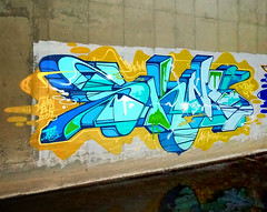 skine by jurne (thesaltr) Tags: streetart art graffiti bayarea eastbay jurne skine thesaltr