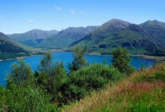 Loch Duich from the viewpoint on the Old Military Road 01, Highlands, Scotland (Caledoniafan) Tags: road trees sky plants sun sunlight mountain mountains flower green nature water berg grass sunshine clouds digital forest landscape see scotland highlands weed wasser strasse natur pflanzen shoreline meadow wiese himmel wolken sunny berge highland shore finepix fujifilm gras l