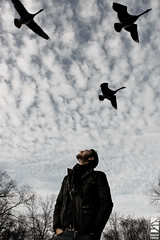 Fly Away Home [Explore] (David Freid) Tags: trees winter portrait man birds clouds canon photography geese pennsylvania goose pa newhope buckscounty forthebirds