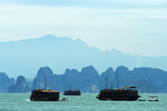Blue tones of H Long Bay (Gregor  Samsa) Tags: mist rock misty fog boats see bay boat junk rocks long view foggy unesco vietnam layers overlook halong halongbay junks vnh  hlong h vnhhlong hlongbay carstic
