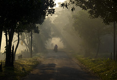 Country Road (Pagan Eyes) Tags: road morning winter light mist fog morninglight haze ray country bd bangladesh countryroad wintermorning yellowlight lightray vaporization kishoreganj excellent flickrfriends shoilojani