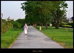 "Walking Alone ("" Don Quixote "") Tags: park urban path saudiarabia gassim alqasim buraydah"