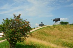 Tarvas (anuwintschalek) Tags: summer sculpture estonia theatre sommer hill july teater eesti suvi estland hgel auroch rakvere tarvas 2011 pihlakas 18200vr mgi auerochse psas d7k skulptuur vallimgi nikond7000 teatrihoone
