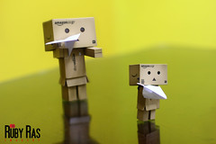 Day 16 (Ruby Ras) Tags: canon days jamaica day16 danbo 366 60d danboard 3662012