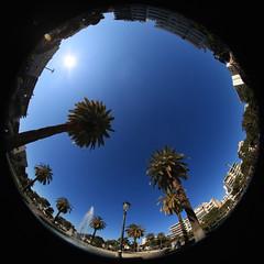psilalonia square Patras (dtsortanidis) Tags: blue sky water square mark fisheye greece palmtrees ii 5d circular dimitris patras patra flickrduel     815mm tsortanidis psilalonia  dimirtrios