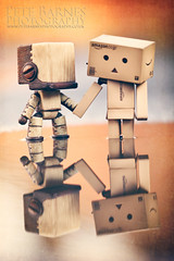 Danbo in Love (Pete Barnes Photography) Tags: wood boy reflection art love girl vintage square puddle happy cool sad emotion box young cardboard holdinghands danbo forbiddenlove sackbot