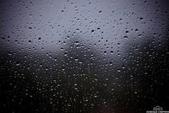 Vistas da Janela (Henrique Campinha) Tags: brazil paran gua brasil br chuva gotas pr janela parana fotografia frio henrique molhada fotografo londrina eventos goticulas campinha henriquejaack