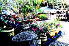บ้านสวนต้นน้ำวังทอง:The Country Cabin Garden  เป็นสวนเกษตรธรรมชาติผสมผสานแบบปราณีต ใช้พื้นที่ทำกิจกรรมให้เกิดประโยชน์สูงสุด งดใช้สารเคมี มุ่งมั่นสู่เกษตรอินทรีย์ สนับสนุนนวัตกรรมภูมิปัญญาทั่วโลกเพื่อการใช้พลังงานทางเลือก เช่นกังหันน้ำผลิตไฟฟ้าพลังน้ำขนาดจ