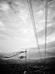 Melancholy (Jorge Daniel Segura) Tags: sky green art lines clouds landscape wind cellphone tint monochromatic pylon surrealistic magicrealism greentint