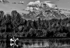 Back to the Old West (Jeff Clow) Tags: horse fishing western serene rider horseback tranquil theoldwest jacksonholewyoming buffalofork
