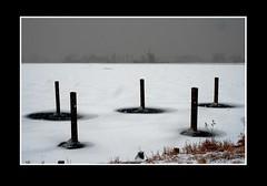 Landschap (Theo Kelderman) Tags: holland haarlem canon sneeuw nederland landschap schalkwijk ijs palen molenplas molendehommel theokeldermanphotography verenigdepolders vrijdag3feb2012