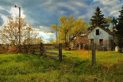 Springs Renewel (photographicimages) Tags: abandoned broken farmhouse fence landscape spring country scene blooming
