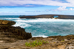 IMG_4067 (The.Rohit) Tags: ocean travel vacation beach hawaii waves oahu explore aloha seaarch laiepoint windwardcoast laiiepoint