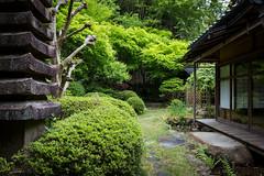 Nobotokean Temple, Kyoto (Christian Kaden) Tags: japan temple kyoto tea   kioto kansai tee teahouse tempel     teehaus  chashitsu   nobotokean