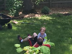 "Daddy and Paul Playing in the Yard • <a style=""font-size:0.8em;"" href=""http://www.flickr.com/photos/109120354@N07/26621092773/"" target=""_blank"">View on Flickr</a>"