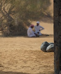 Seeking Shade (pam's pics-) Tags: men dubai desert stones traditional middleeast arabia camels unitedarabemirates traditionaldress ua bedouin camelriders pammorris pamspics sonya6000
