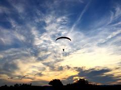 Pjaro volador (ancama_99(toni)) Tags: 10favs 10faves
