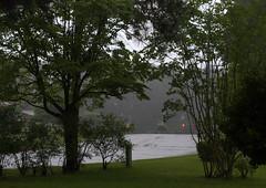 IMG_8681.CR2 (jalexartis) Tags: trees rain spring gloomy calm rainy reflective gloom ilikerain ilikegloomy