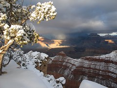 Frosted Canyon (zoniedude1) Tags: winter light sunset shadow arizona snow cold southwest nature outdoors afternoon view snowy grandcanyon rocky canyon adventure edge vista rim overlook exploration discovery sunbeam precipice southrim stormclouds winterstorm snowytree ontheedge grandcanyonnationalpark stormyskies matherpoint thebighole gcnp outinthewild zoniedude1 earthnaturelife canonpowershotg12 southrimwinter2016 frostedcanyon