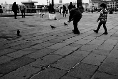 Two On Three - Sestiere Castello, Venice (Faborsky Photography) Tags: venice boy blackandwhite bw italy food slr boys children three kid nikon child pigeon chase dslr venezia piazzasanmarco stmarkssquare studytour d80 blackwhitephotos nikond80