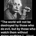 The World will into be destroyed by those who do evil  but by those who watch them