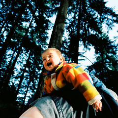 AR06950_AR06950-R1-E008 (Alicia J. Rose) Tags: familyportraits forestpark falltrees cutetoddler aliciajrose bigforest tinylumberjack