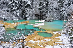 In the Arms of the Forest (nawapa) Tags: china travel winter snow pool yellow river landscape pond dragon view scenic historic songpan sichuan huanglong calcite 2011 nawapa