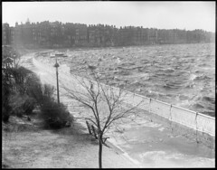 Charles River (Boston Public Library) Tags: weather storms floods lesliejones