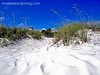 White Sand, Blue Sky Beach Path to Sliders on Amelia Island