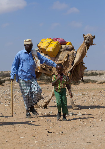 Coming back from the well in Degehabur  - Somaliland