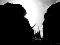 Ominous (Mike Tauer) Tags: trees blackandwhite sun snow tree rock stone southdakota blackhills spring sd sylvanlake custer