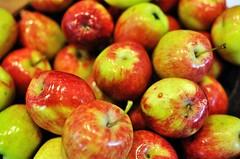 Apel Malang (h4mster) Tags: apple fruits nikon colorful local malang d5000