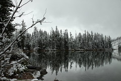 Seems Like Winter (webbmb) Tags: winter lake snow reflection grandtetonnationalpark 5photosaday