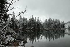 Seems Like Winter (webbmb) Tags: winter lake snow reflection grandtetonnationalpark 5photosaday