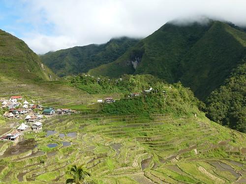 フィリピン・コルディリェーラの棚田群の画像 p1_5