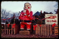 """Mommy, Santa scares me!"" (DjD-567) Tags: christmas santaclaus trees december manchester nh elmst scary frightening horrible nightmares evil statue kitsch newengland holidays saintnick demented kitch vintage heseesyouwhenyouresleeping landmark infamous"