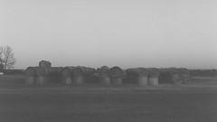 ole'bales 0003 (Martin<3s4x5) Tags: slr film 2004 digital speed vintage lens leaf 645 with view kodak tmax scanner prism ring full iso mc negative bronica 400 frame shutter 17 medium format grip electronic polarizer expired finder f28 ae megapixel pro1 koki stepup hoya 75mm aspherical noritsu etrs zenza 62mm zenzanon 5862mm