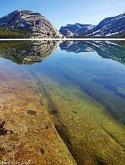 Quirky Reflection, Tenaya Lake (DM Weber) Tags: california reflection water canon landscape clear yosemite quirky tenayalake bisection eos5dmk2 psa148 dmweber