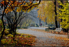 A walk in the park (bbic) Tags: park autumn tree leaves colours