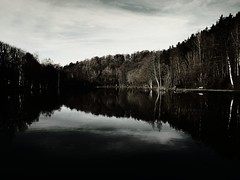 pond in the woods (MOSTAFA HAMAD | PHOTOGRAPHY) Tags: pictures camera blue trees sunset sea sky italy sun black mountains color tree art love nature water clouds sunrise canon germany landscape photography is pond woods meer wasser europa day alone fotografie sonnenuntergang iraq natur 110 himmel wolken berge ixus landschaft sonne bume sonnenaufgang hamad baum  mostafa       iaq               mostafahamad