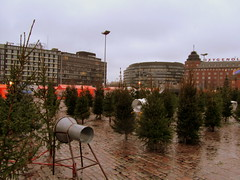 365/351 Christmas is not a time... Dec. 17, 2011 (ConnectIrmeli) Tags: finland helsinki marketplace christmastrees hakaniemi apicaday 3652011