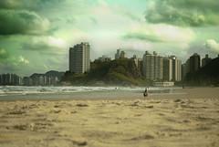 Praia Guaruja (Roxxo1) Tags: arena gaviota playas brasilsaopaulo guaruya