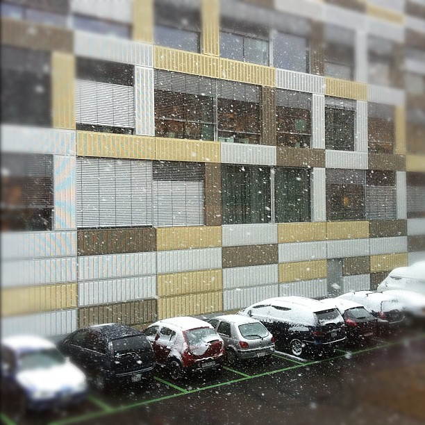 LET IT SNOW, LET IT SNOW, let it #snow