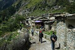 Passing through Garbayang Village (Saumil U. Shah) Tags: india mountain mountains nature trekking trek nikon village hiking hike journey himalaya spiritual shiva hindu hinduism incredible kailash yatra jain pilgrimage himalayas shah mansarovar manasarovar uttarpradesh jainism kailas   saumil kumaon kmy uttarakhand incredibleindia   garbyang kmyatra saumilshah  garbayang